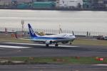 Fly Yokotayaさんが、羽田空港で撮影した全日空 737-881の航空フォト(写真)