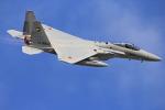 さかなやさんが、入間飛行場で撮影した航空自衛隊 F-15J Eagleの航空フォト(写真)