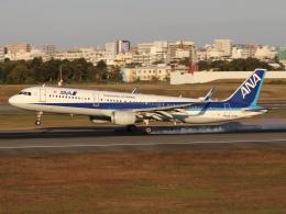 ドガースさんが、伊丹空港で撮影した全日空 A321-211の航空フォト(飛行機 写真・画像)