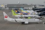 RAOUさんが、中部国際空港で撮影した日本トランスオーシャン航空 737-8Q3の航空フォト(写真)