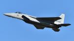 PaveHawk_Golfさんが、名古屋飛行場で撮影した航空自衛隊 F-15J Eagleの航空フォト(写真)