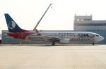 coolinsjpさんが、上海浦東国際空港で撮影した山東航空 737-85Nの航空フォト(写真)