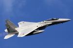 take_2014さんが、入間飛行場で撮影した航空自衛隊 F-15J Eagleの航空フォト(写真)