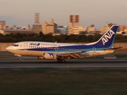 ドガースさんが、伊丹空港で撮影したANAウイングス 737-5L9の航空フォト(飛行機 写真・画像)