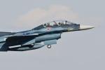 ヨッちゃんさんが、入間飛行場で撮影した航空自衛隊 F-2Bの航空フォト(飛行機 写真・画像)