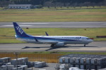 meijeanさんが、成田国際空港で撮影した全日空 737-881の航空フォト(写真)