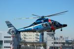 まぃあんこさんが、東京ヘリポートで撮影した警視庁 EC155B1の航空フォト(写真)