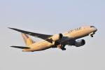 Orange linerさんが、成田国際空港で撮影したユナイテッド航空 787-8 Dreamlinerの航空フォト(写真)