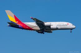 航空フォト:HL7626 アシアナ航空 A380