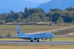 パンダさんが、青森空港で撮影した日本航空 737-846の航空フォト(写真)
