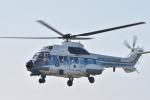 蒼い鳩さんが、立川飛行場で撮影した海上保安庁 AS332L1 Super Pumaの航空フォト(写真)