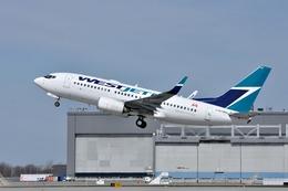 aircanadafunさんが、モントリオール・ピエール・エリオット・トルドー国際空港で撮影したウェストジェット 737-7CTの航空フォト(飛行機 写真・画像)