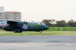 NCT310さんが、入間飛行場で撮影した航空自衛隊 C-130H Herculesの航空フォト(写真)