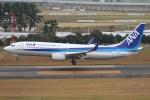 やまけんさんが、仙台空港で撮影した全日空 737-881の航空フォト(写真)
