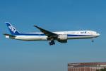 みなかもさんが、成田国際空港で撮影した全日空 777-381/ERの航空フォト(写真)