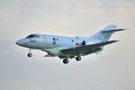 kon chanさんが、那覇空港で撮影した航空自衛隊 U-125A(Hawker 800)の航空フォト(写真)