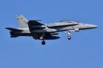 はるかのパパさんが、厚木飛行場で撮影したアメリカ海兵隊 F/A-18C Hornetの航空フォト(写真)
