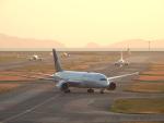 ミルッチさんが、関西国際空港で撮影したユナイテッド航空 787-8 Dreamlinerの航空フォト(写真)