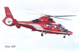 RINA-281さんが、福井空港で撮影した名古屋市消防航空隊 AS365N3 Dauphin 2の航空フォト(飛行機 写真・画像)