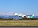 kikiさんが、静岡空港で撮影したエアソウル A321-231の航空フォト(写真)