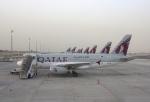 cornicheさんが、ドーハ・ハマド国際空港で撮影したカタール航空 A319-133LRの航空フォト(写真)