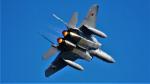 Ocean-Lightさんが、入間飛行場で撮影した航空自衛隊 F-15J Eagleの航空フォト(写真)