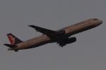 木人さんが、成田国際空港で撮影したマカオ航空 A321-231の航空フォト(写真)