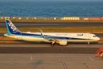 ばっきーさんが、羽田空港で撮影した全日空 A321-211の航空フォト(写真)