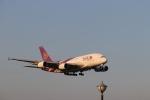 Teddyさんが、成田国際空港で撮影したタイ国際航空 A380-841の航空フォト(写真)