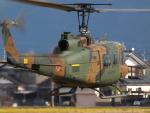 自由猫さんが、福井空港で撮影した陸上自衛隊 UH-1Jの航空フォト(写真)