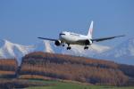 ちょっきんさんが、旭川空港で撮影した日本航空 767-346の航空フォト(写真)