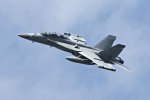 isiさんが、厚木飛行場で撮影したアメリカ海軍 EA-18G Growlerの航空フォト(写真)