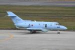 シュウさんが、新潟空港で撮影した航空自衛隊 U-125A(Hawker 800)の航空フォト(写真)