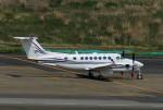 485k60さんが、羽田空港で撮影したノエビア B300の航空フォト(飛行機 写真・画像)