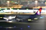 HISAHIさんが、羽田空港で撮影したハワイアン航空 A330-243の航空フォト(写真)