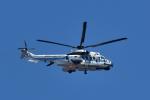 NFファンさんが、厚木飛行場で撮影した海上保安庁 EC225LP Super Puma Mk2+の航空フォト(写真)