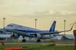 KAIHOさんが、徳島空港で撮影した全日空 A321-211の航空フォト(写真)