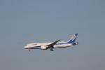 ジャンクさんが、成田国際空港で撮影した全日空 787-8 Dreamlinerの航空フォト(写真)