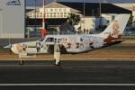 MOR1(新アカウント)さんが、八尾空港で撮影した日本個人所有 PA-46-310P Malibuの航空フォト(写真)