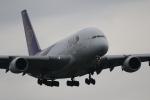 tjun1さんが、成田国際空港で撮影したタイ国際航空 A380-841の航空フォト(写真)