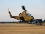 おっつんさんが、入間飛行場で撮影した陸上自衛隊 AH-1Sの航空フォト(写真)