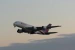 Koba350さんが、関西国際空港で撮影したタイ国際航空 A380-841の航空フォト(写真)