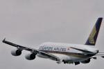 NALUさんが、関西国際空港で撮影したシンガポール航空 A380-841の航空フォト(写真)