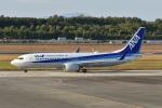 ワイエスさんが、熊本空港で撮影した全日空 737-881の航空フォト(写真)