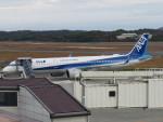 sp3混成軌道さんが、岡山空港で撮影した全日空 A321-272Nの航空フォト(写真)