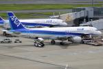 NANASE UNITED®さんが、羽田空港で撮影した全日空 A320-211の航空フォト(写真)