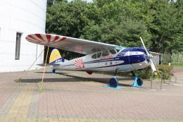 自重さんが、航空科学博物館で撮影した朝日新聞社 195の航空フォト(飛行機 写真・画像)