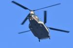 500さんが、自宅上空で撮影した航空自衛隊 CH-47J/LRの航空フォト(写真)