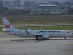 chappyさんが、伊丹空港で撮影した日本航空 737-846の航空フォト(写真)