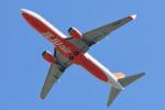 パンダさんが、成田国際空港で撮影したチェジュ航空 737-8LCの航空フォト(写真)